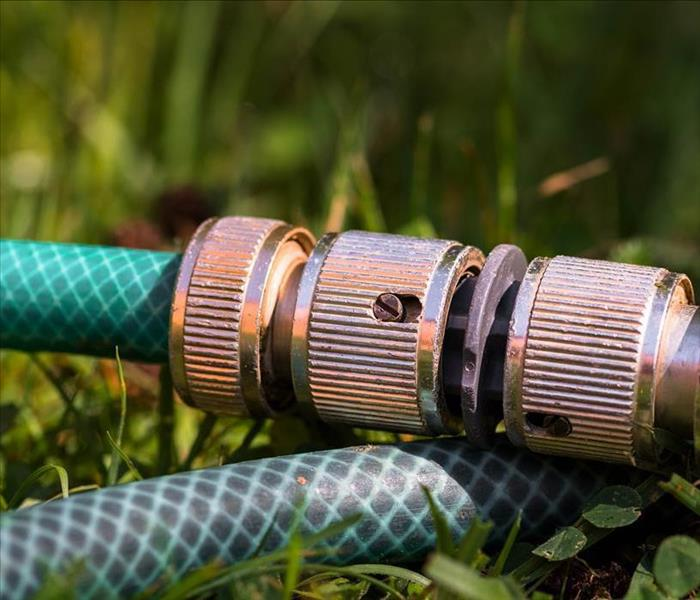 Water hose in the grass