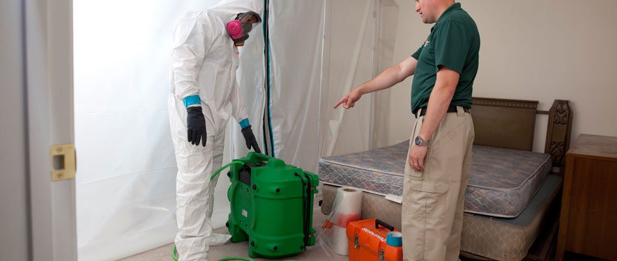 Atlanta, GA mold removal process